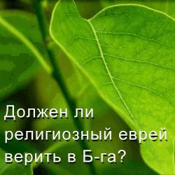 13.54 КБ