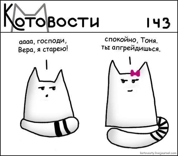 74.87 КБ