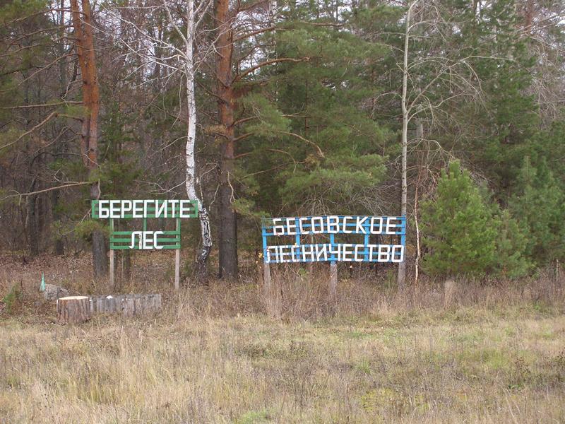 Бесовское лесничество, Ульяновская область