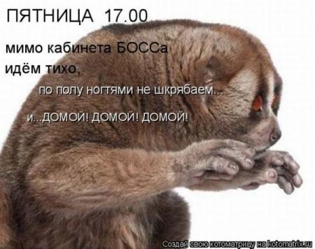 46.90 КБ