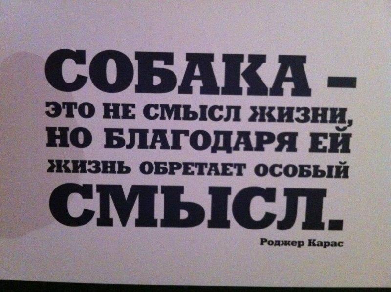 94.79 КБ