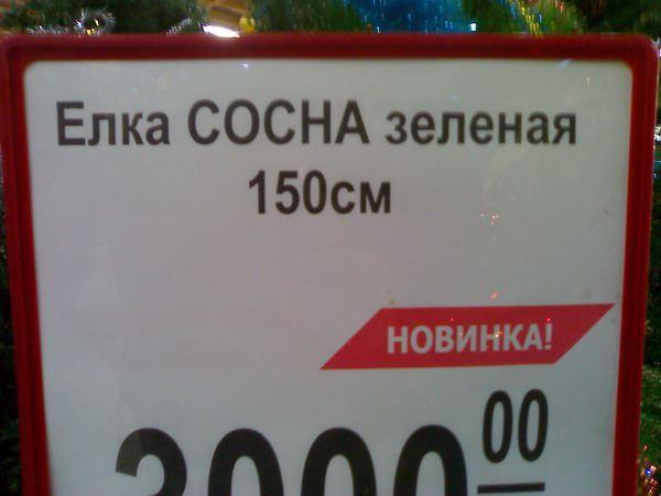 27.50 КБ