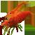 пресноводные креветки в аквариуме