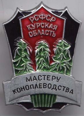 41.24 КБ