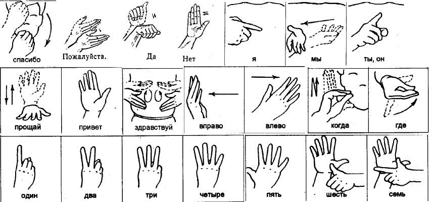 язык жестов виды жестов