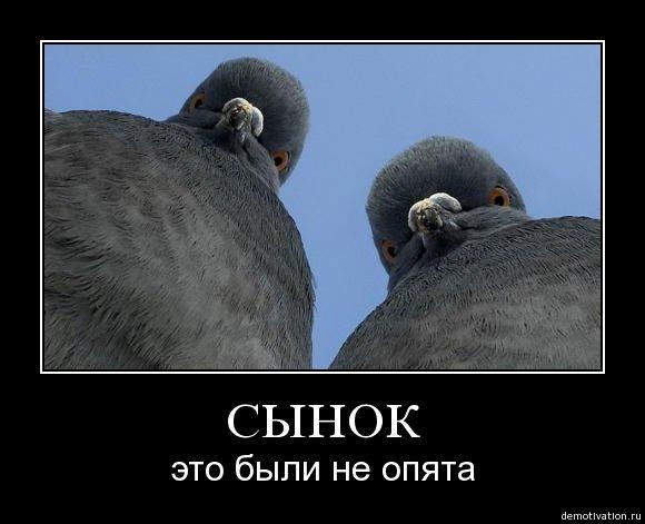 http://www.ljplus.ru/img4/s/t/stevemayster/We4Z6gvPDk.jpg