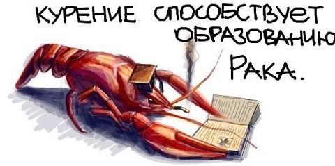 35.21 КБ