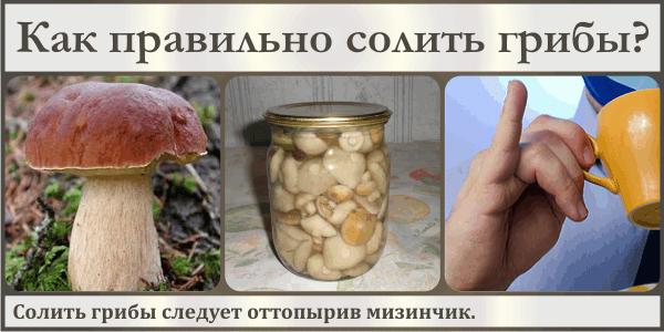 94.31 КБ
