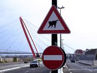 https://www.ljplus.ru/img4/z/h/zhezhenka/th_Cat_sign.jpg